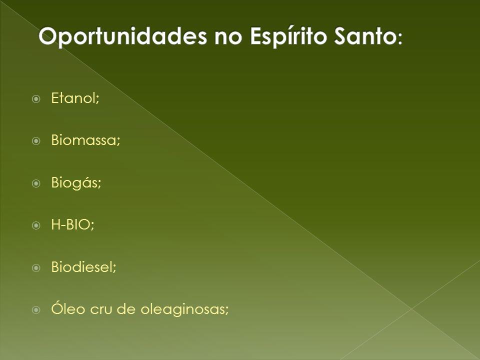 Etanol; Biomassa; Biogás; H-BIO; Biodiesel; Óleo cru de oleaginosas;
