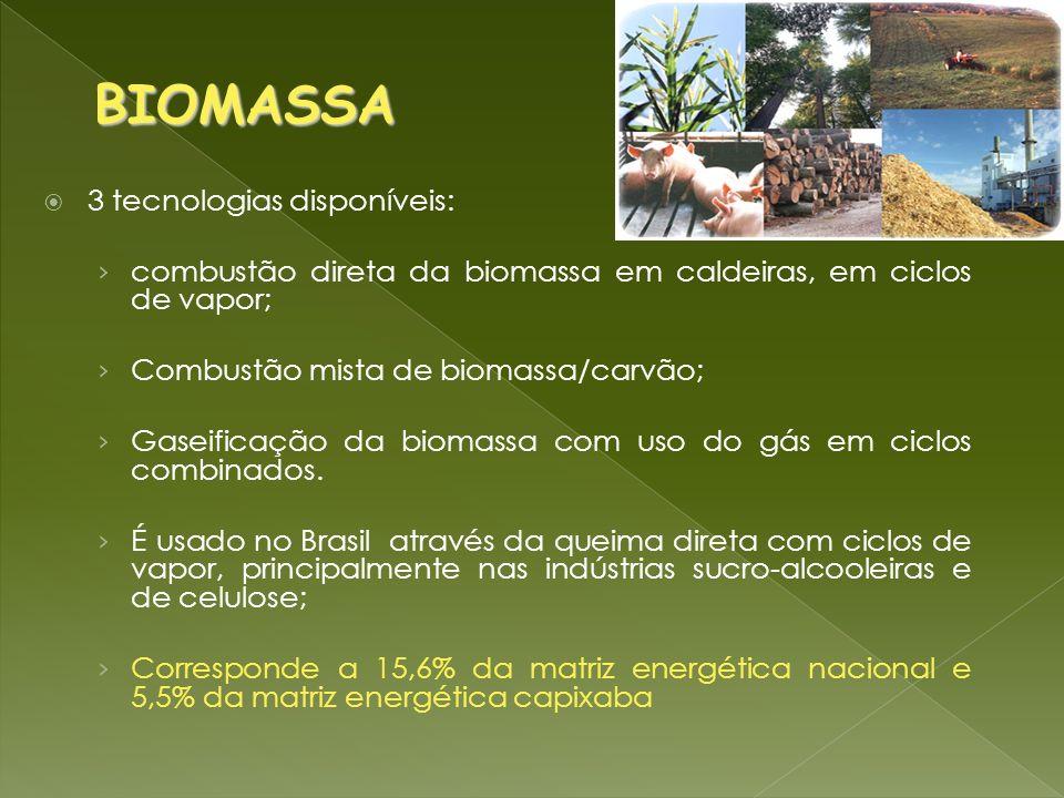 3 tecnologias disponíveis: combustão direta da biomassa em caldeiras, em ciclos de vapor; Combustão mista de biomassa/carvão; Gaseificação da biomassa