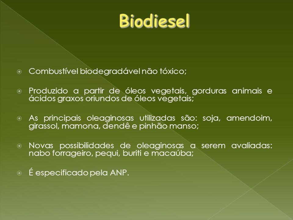 Combustível biodegradável não tóxico; Produzido a partir de óleos vegetais, gorduras animais e ácidos graxos oriundos de óleos vegetais; As principais