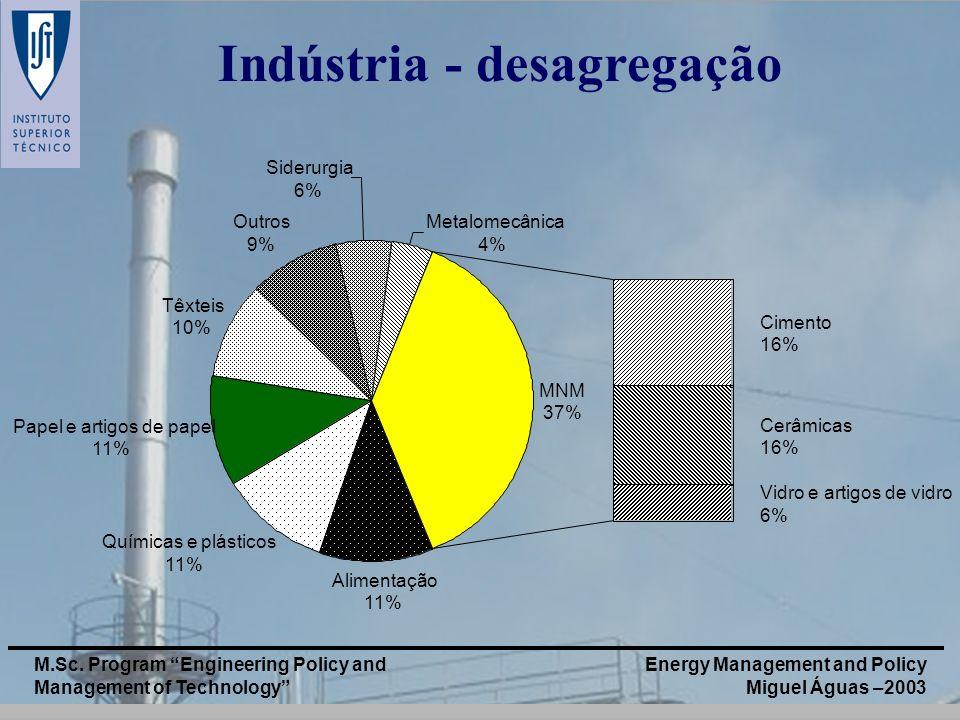 Energy Management and Policy Miguel Águas –2003 M.Sc. Program Engineering Policy and Management of Technology Alimentação 11% Químicas e plásticos 11%