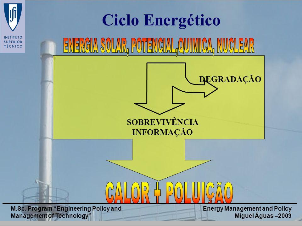 Energy Management and Policy Miguel Águas –2003 M.Sc. Program Engineering Policy and Management of Technology Ciclo Energético DEGRADAÇÃO SOBREVIVÊNCI