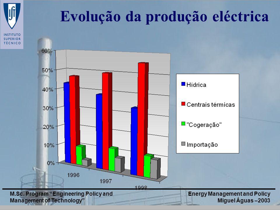 Energy Management and Policy Miguel Águas –2003 M.Sc. Program Engineering Policy and Management of Technology Evolução da produção eléctrica