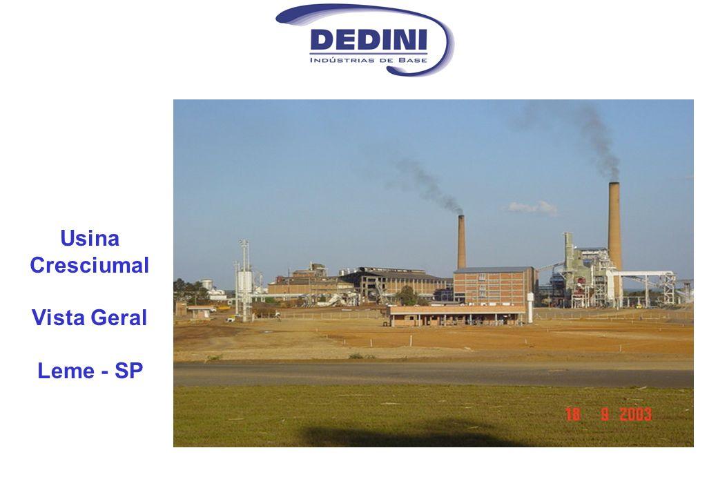 Principais Características da Usina (Safra 2002 / 2003) Moagem: 1.3 milhões /ano (7.500 t/dia) (320 t/h) Período de Safra:Maio a Novembro ( 200 dias ) Fator de Disponibilidade:85 % Produção de Açúcar: 83.000 t (57% TRS) Produção de Álcool:42.000 m 3 (43% TRS) Produção de Levedura: 500 t Número de funcionários: 1500 (safra) / 800 (entressafra)