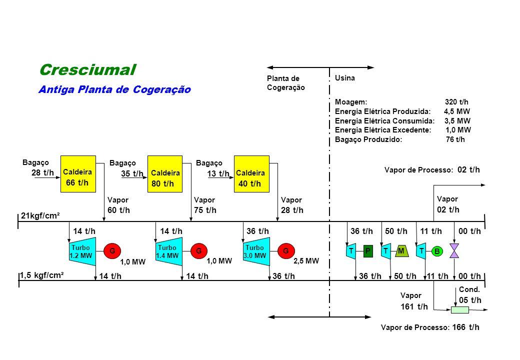 14 t/h36 t/h50 t/h36 t/h11 t/h Caldeira 80 t/h 00 t/h 14 t/h36 t/h 50 t/h11 t/h Cond. 05 t/h M B 00 t/h PGG Moagem: 320 t/h Energia Elétrica Produzida