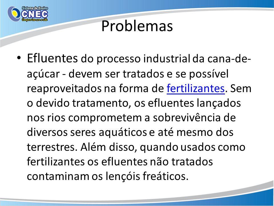 Problemas Efluentes do processo industrial da cana-de- açúcar - devem ser tratados e se possível reaproveitados na forma de fertilizantes. Sem o devid