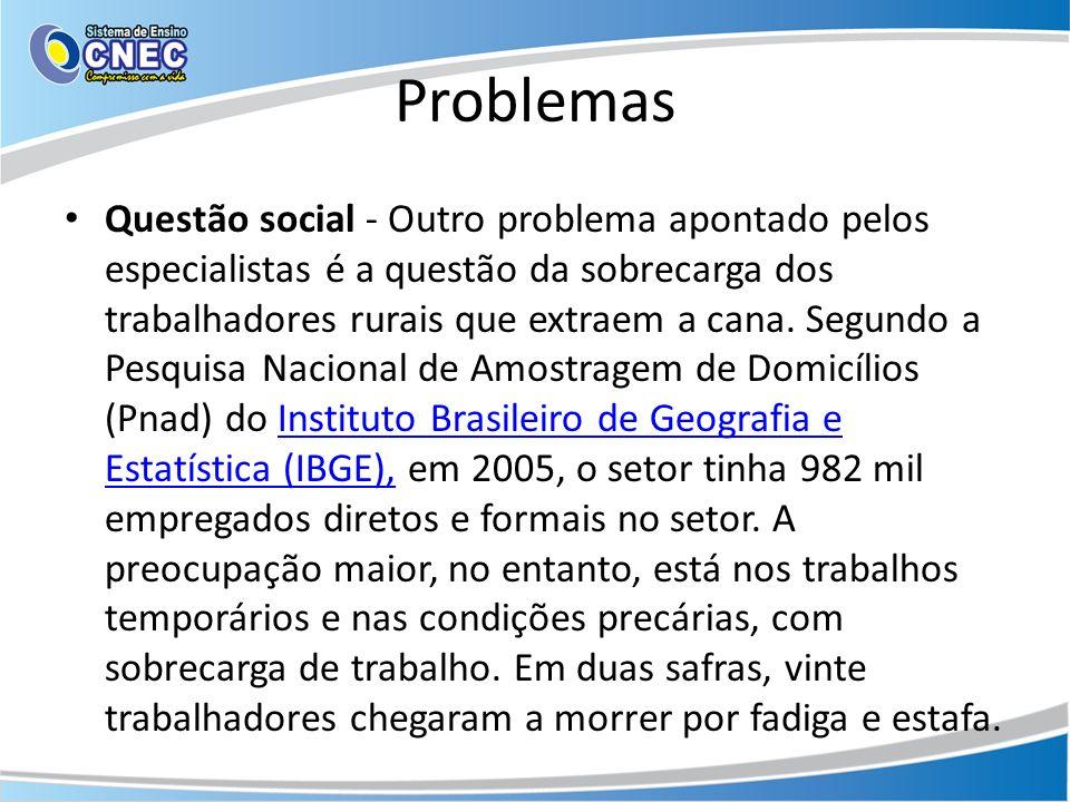 Problemas Questão social - Outro problema apontado pelos especialistas é a questão da sobrecarga dos trabalhadores rurais que extraem a cana. Segundo
