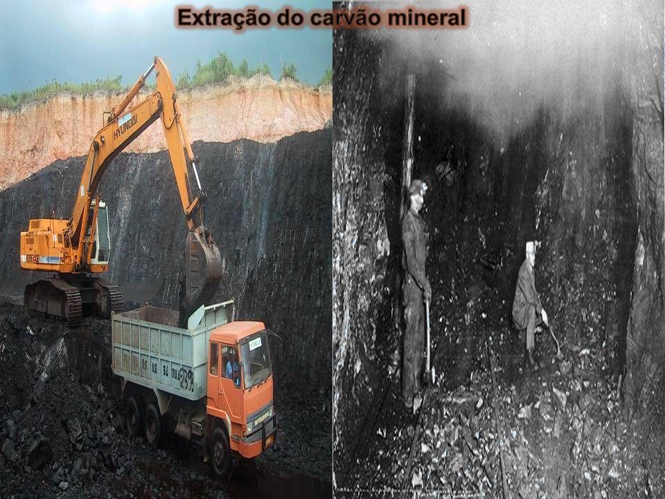 carvão mineral O carvão mineral é o resultado de transforma- ções químicas que se processaram a partir de grandes florestas soterradas em antigos perí