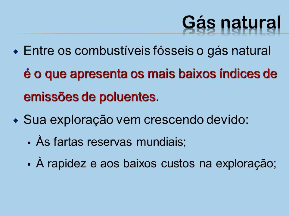 Essa fonte de energia é encontrada na natureza associada ou não ao petróleo. É usado como combustível em termelétricas, em aquecimento, como combustív