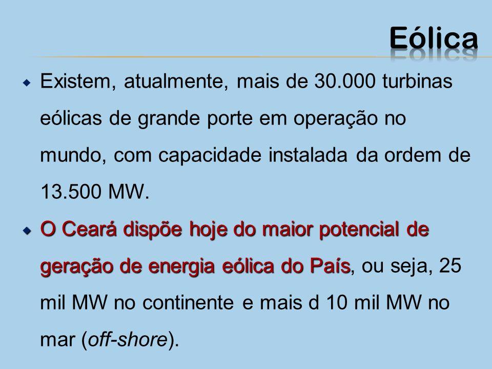 Uma usina eólica é composta de grandes hélices e vários geradores eólicos instalados em locais onde a velocidade do vento é adequada. A força do vento
