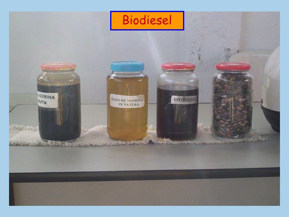 biomassa As fontes orgânicas que são usadas para produzir energia são chamadas de biomassa. biodigestor O biodigestor é o aparelho utilizado para real