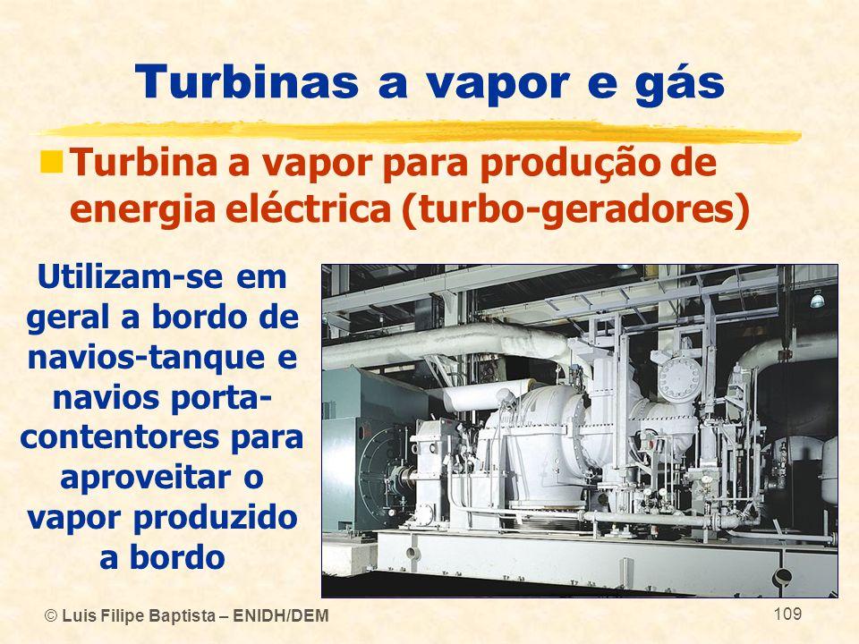 © Luis Filipe Baptista – ENIDH/DEM 109 Turbinas a vapor e gás Turbina a vapor para produção de energia eléctrica (turbo-geradores) Utilizam-se em gera