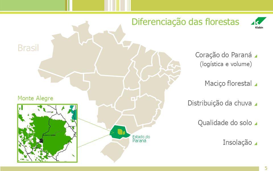 Diferenciação das florestas Coração do Paraná (logística e volume) Maciço florestal Distribuição da chuva Qualidade do solo Insolação 5 Estado do Para