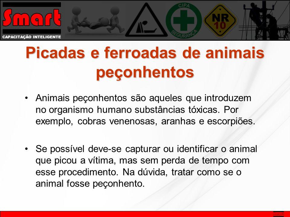 CAPACITAÇÃO INTELIGENTE Picadas e ferroadas de animais peçonhentos Animais peçonhentos são aqueles que introduzem no organismo humano substâncias tóxicas.