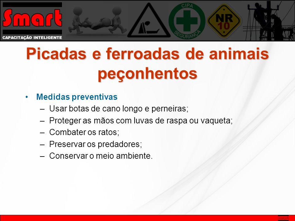 CAPACITAÇÃO INTELIGENTE Medidas preventivas –Usar botas de cano longo e perneiras; –Proteger as mãos com luvas de raspa ou vaqueta; –Combater os ratos; –Preservar os predadores; –Conservar o meio ambiente.