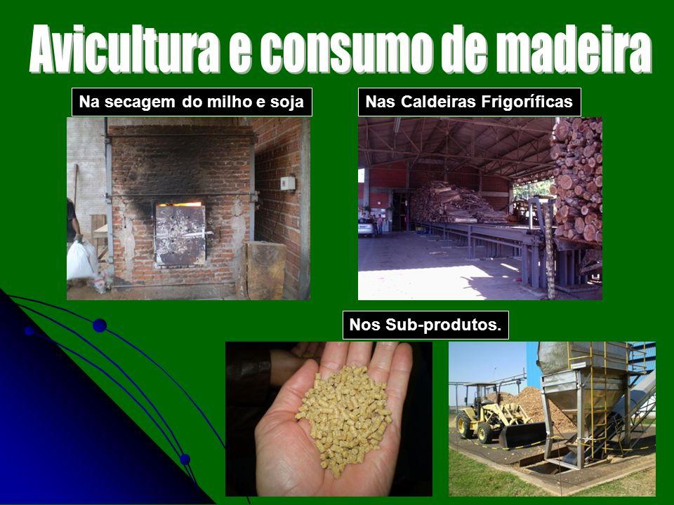 Na secagem do milho e sojaNas Caldeiras Frigoríficas Nos Sub-produtos.