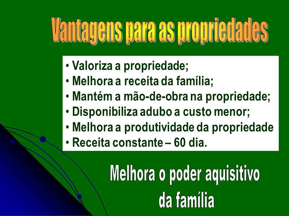 Valoriza a propriedade; Melhora a receita da família; Mantém a mão-de-obra na propriedade; Disponibiliza adubo a custo menor; Melhora a produtividade