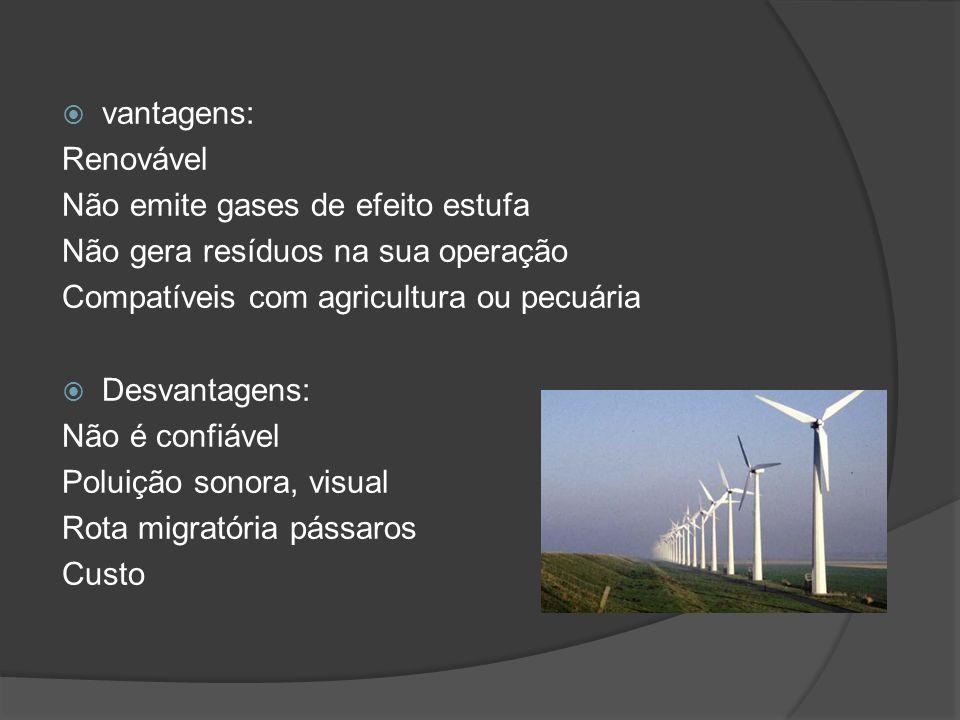 vantagens: Renovável Não emite gases de efeito estufa Não gera resíduos na sua operação Compatíveis com agricultura ou pecuária Desvantagens: Não é confiável Poluição sonora, visual Rota migratória pássaros Custo