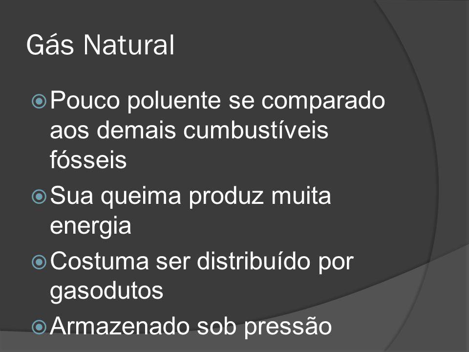 Gás Natural Pouco poluente se comparado aos demais cumbustíveis fósseis Sua queima produz muita energia Costuma ser distribuído por gasodutos Armazenado sob pressão