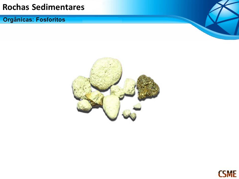 Rochas Sedimentares Orgânicas: Fosforitos