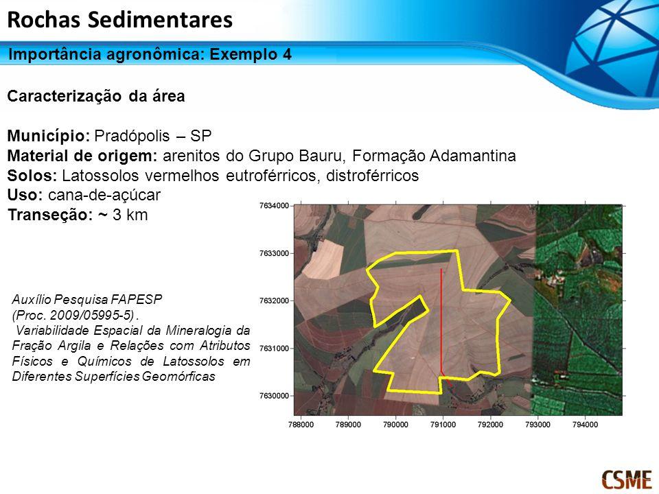 Rochas Sedimentares Importância agronômica: Exemplo 4 Caracterização da área Município: Pradópolis – SP Material de origem: arenitos do Grupo Bauru, F