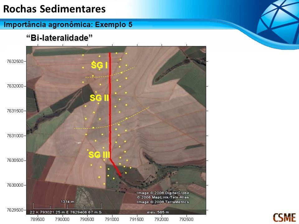 Bi-lateralidade SG I SG II SG III Rochas Sedimentares Importância agronômica: Exemplo 5