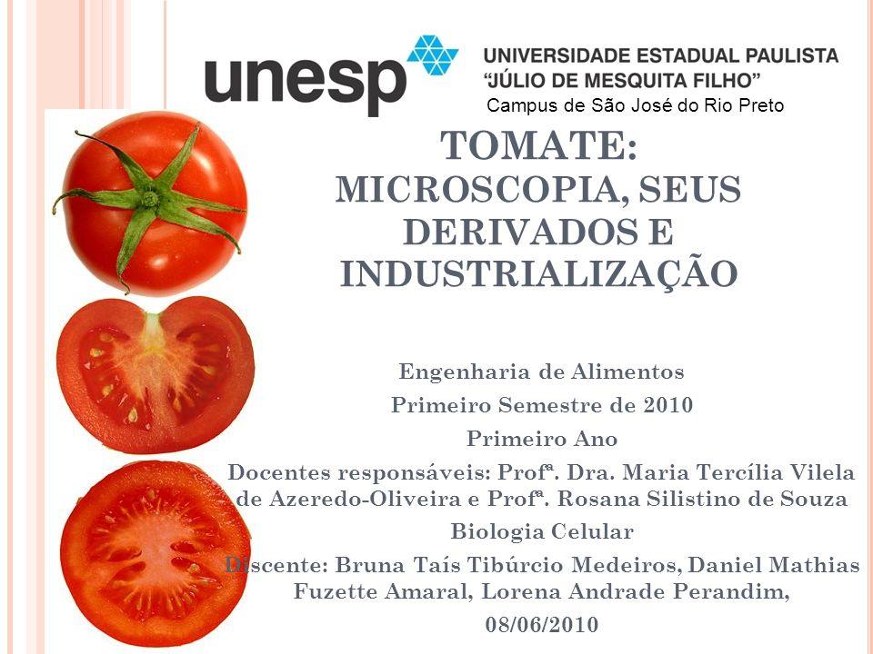 TOMATE: MICROSCOPIA, SEUS DERIVADOS E INDUSTRIALIZAÇÃO Engenharia de Alimentos Primeiro Semestre de 2010 Primeiro Ano Docentes responsáveis: Profª.