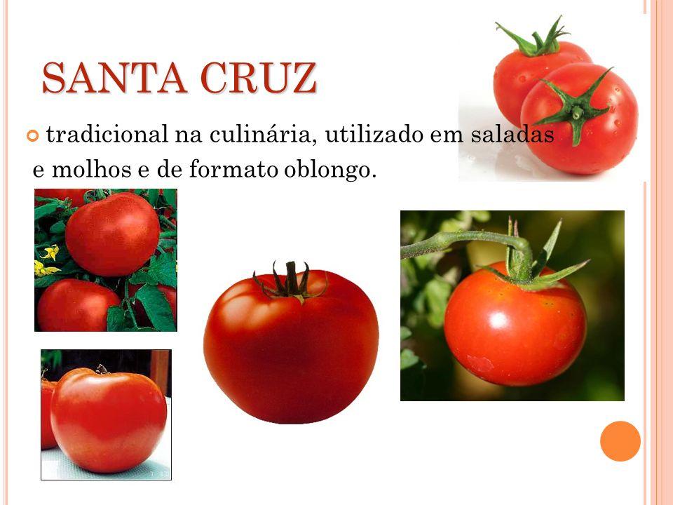 SANTA CRUZ tradicional na culinária, utilizado em saladas e molhos e de formato oblongo.