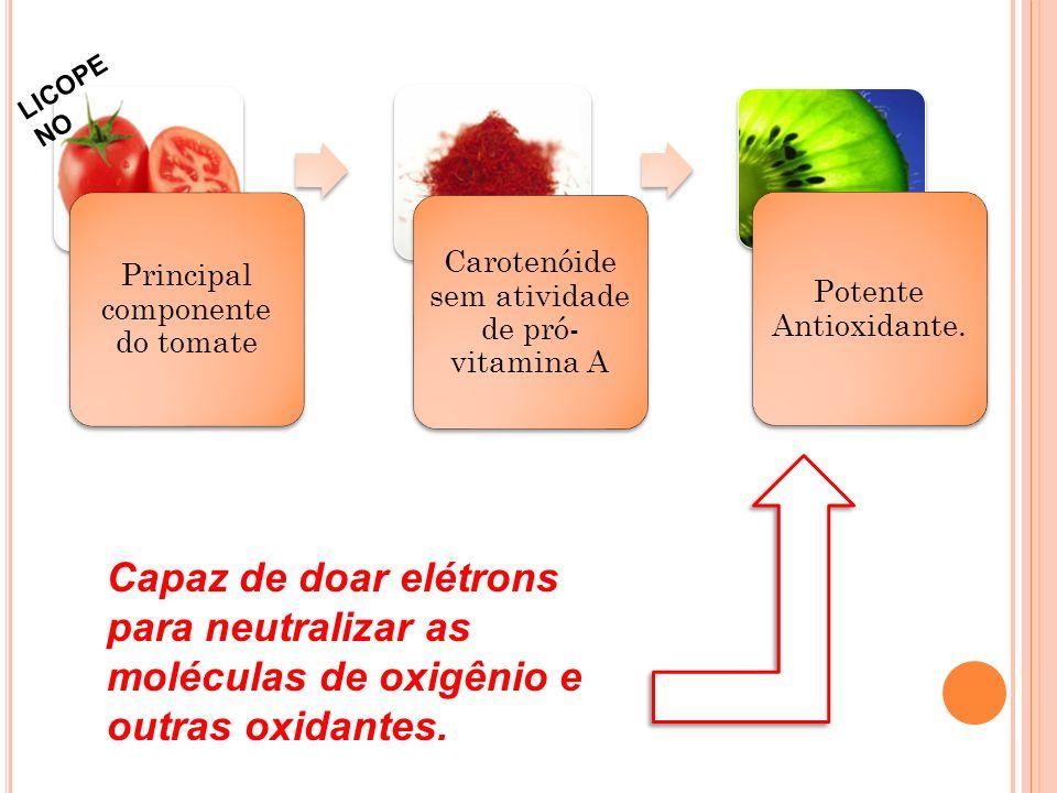 Principal componente do tomate Carotenóide sem atividade de pró- vitamina A Potente Antioxidante.