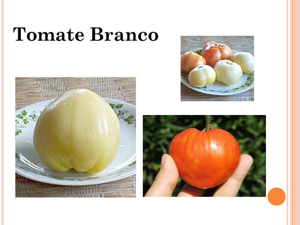 3.DURABILIDADE Está relacionada a durabilidade do tomate depois de colhido.