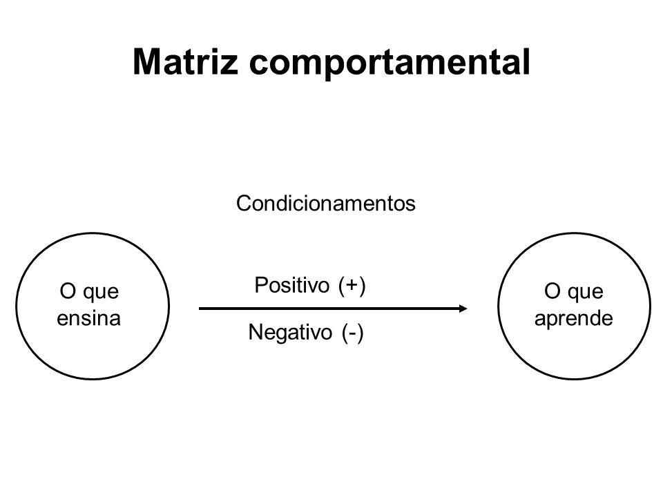 Matriz comportamental O que ensina O que aprende Condicionamentos Positivo (+) Negativo (-)