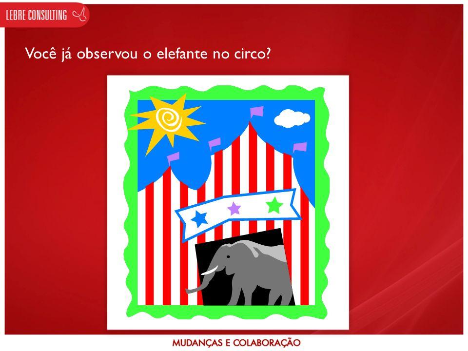 Você já observou o elefante no circo?