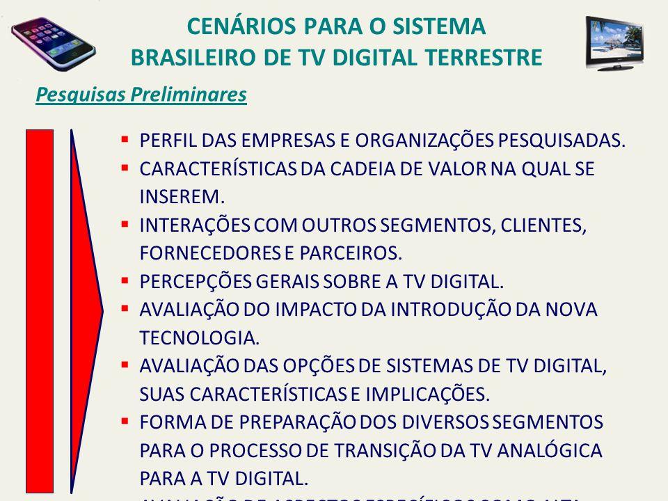 Pesquisas Preliminares PERFIL DAS EMPRESAS E ORGANIZAÇÕES PESQUISADAS.