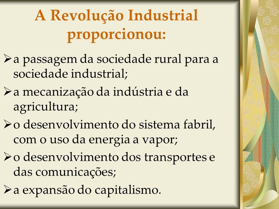 A Revolução Industrial proporcionou: a passagem da sociedade rural para a sociedade industrial; a mecanização da indústria e da agricultura; o desenvolvimento do sistema fabril, com o uso da energia a vapor; o desenvolvimento dos transportes e das comunicações; a expansão do capitalismo.