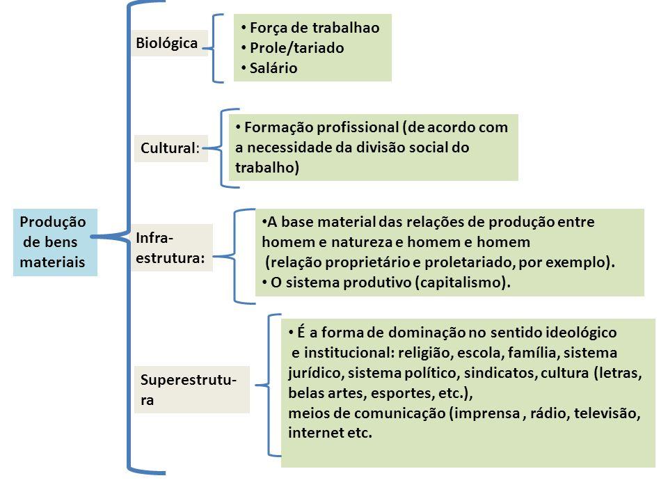 Produção de bens materiais Biológica Força de trabalhao Prole/tariado Salário Cultural: Formação profissional (de acordo com a necessidade da divisão