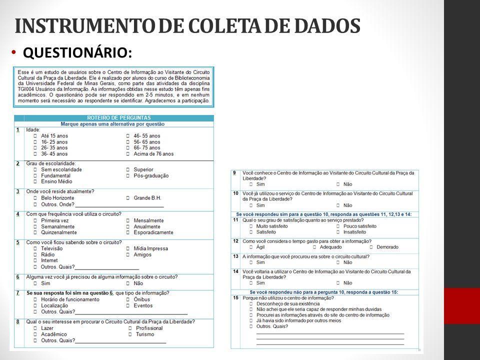 INSTRUMENTO DE COLETA DE DADOS QUESTIONÁRIO: