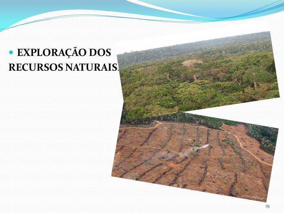 EXPLORAÇÃO DOS RECURSOS NATURAIS. 19