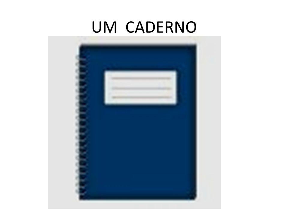 UM FICHÁRIO