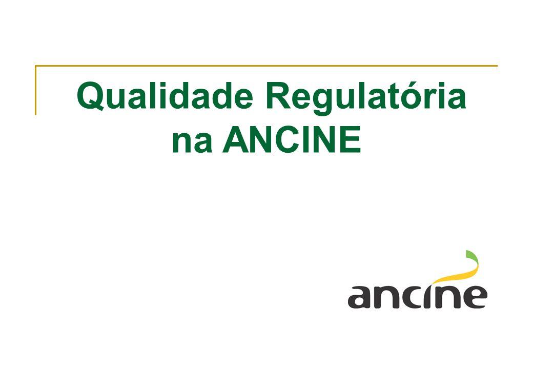AGENDA 1.A ANCINE, a Indústria Audiovisual e o Projeto- Piloto de AIR 2.Estágio Atual e Próximos passos ligados à Qualidade Regulatória 3.Oportunidades Paralelas de Aprimoramento 4.Agenda Regulatória 2013-14