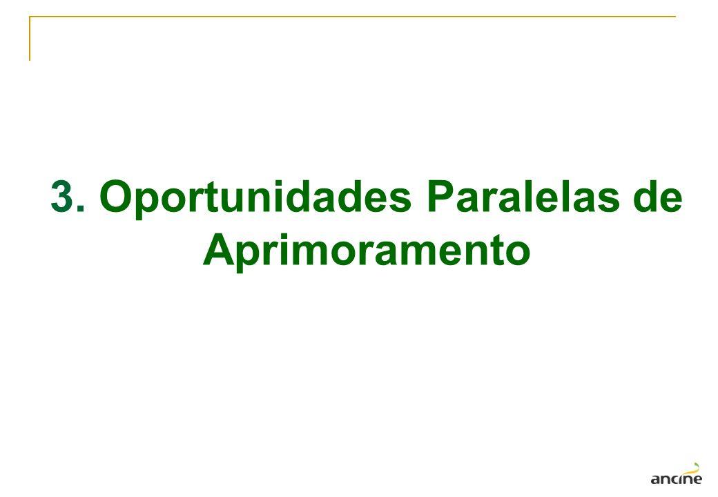 3. Oportunidades Paralelas de Aprimoramento