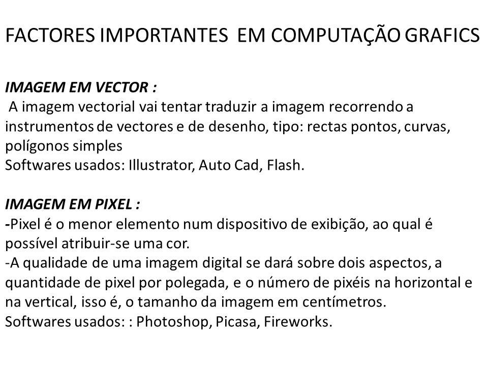 FACTORES IMPORTANTES EM COMPUTAÇÃO GRAFICS IMAGEM EM VECTOR : A imagem vectorial vai tentar traduzir a imagem recorrendo a instrumentos de vectores e