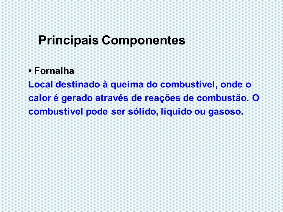 Principais Componentes Fornalha Local destinado à queima do combustível, onde o calor é gerado através de reações de combustão. O combustível pode ser