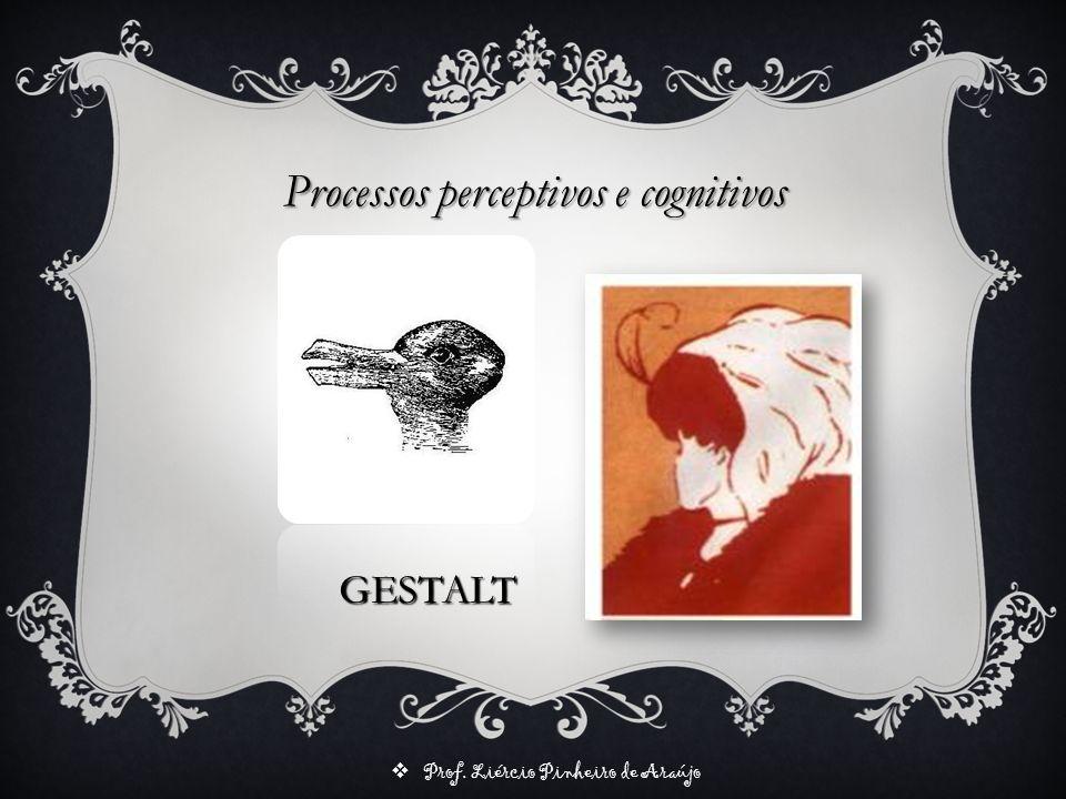 Prof. Liércio Pinheiro de Araújo GESTALT Processos perceptivos e cognitivos