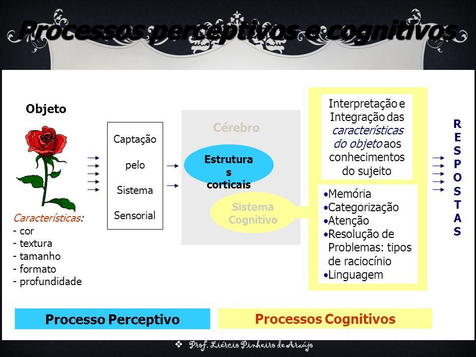 Prof. Liércio Pinheiro de Araújo Processos perceptivos e cognitivos Objeto Características: - cor - textura - tamanho - formato - profundidade Captaçã