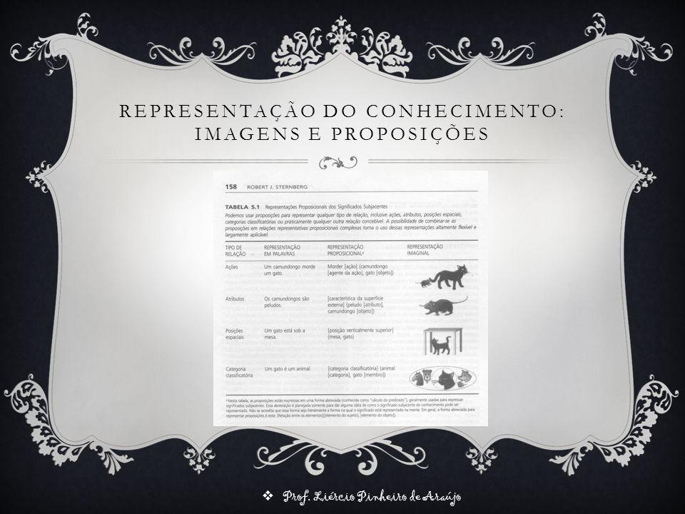 Prof. Liércio Pinheiro de Araújo REPRESENTAÇÃO DO CONHECIMENTO: IMAGENS E PROPOSIÇÕES