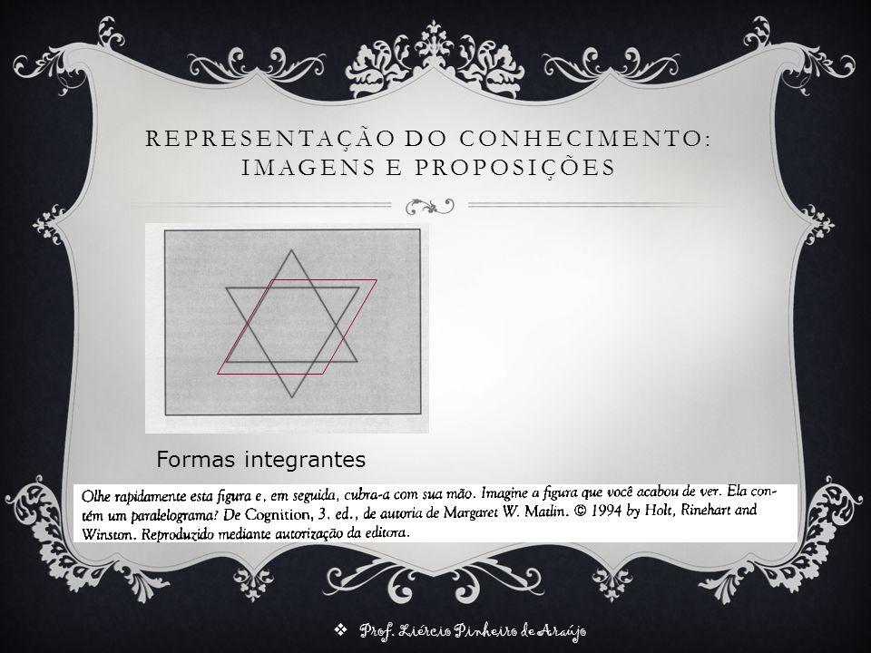 Prof. Liércio Pinheiro de Araújo REPRESENTAÇÃO DO CONHECIMENTO: IMAGENS E PROPOSIÇÕES Formas integrantes