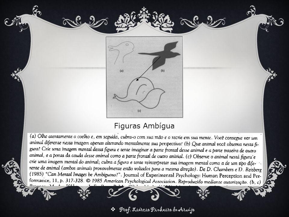 Prof. Liércio Pinheiro de Araújo Figuras Ambígua