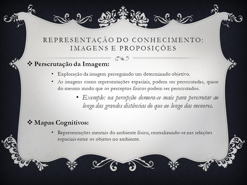 REPRESENTAÇÃO DO CONHECIMENTO: IMAGENS E PROPOSIÇÕES Perscrutação da Imagem: Exploração da imagem perseguindo um determinado objetivo. As imagens como