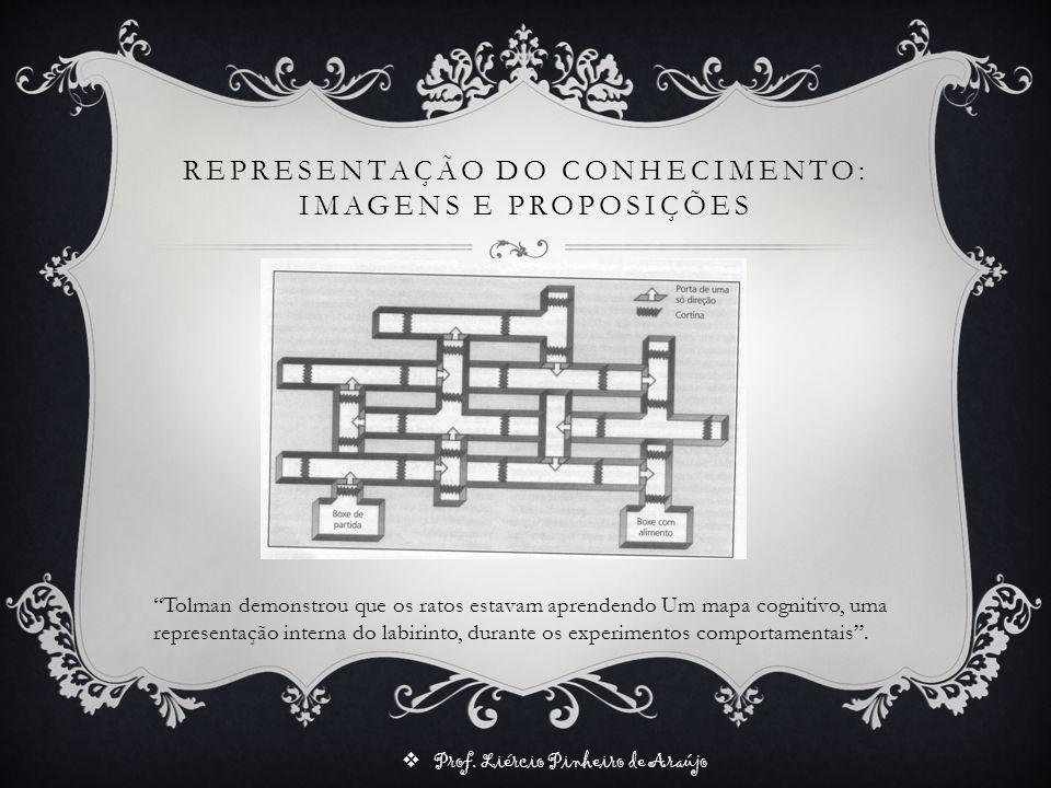 Prof. Liércio Pinheiro de Araújo REPRESENTAÇÃO DO CONHECIMENTO: IMAGENS E PROPOSIÇÕES Tolman demonstrou que os ratos estavam aprendendo Um mapa cognit