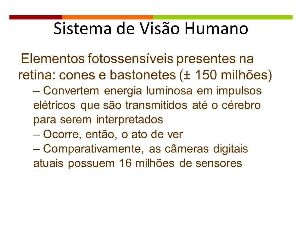 Elementos fotossensíveis presentes na retina: cones e bastonetes (± 150 milhões) – Convertem energia luminosa em impulsos elétricos que são transmitid