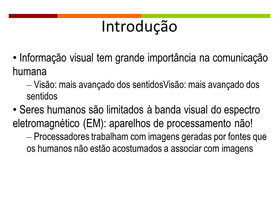 Introdução Informação visual tem grande importância na comunicação humana – Visão: mais avançado dos sentidosVisão: mais avançado dos sentidos Seres h